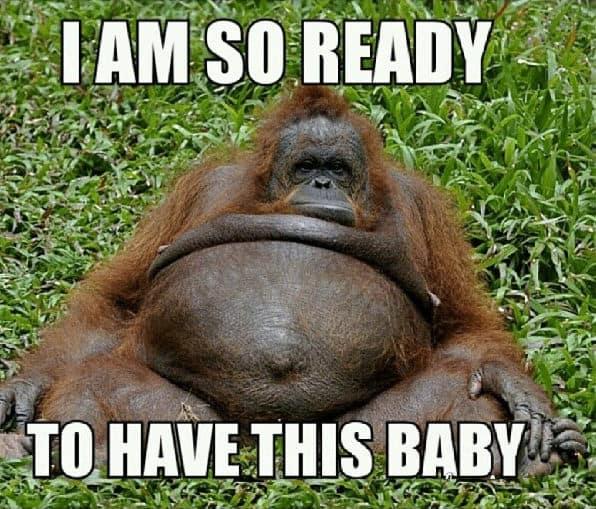 Funny pregnancy meme huge belly