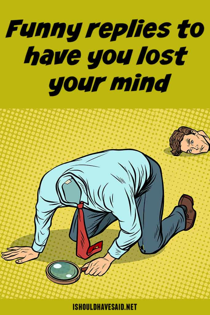 Funny replies when people ask if YOU HAVE LOST YOUR MIND