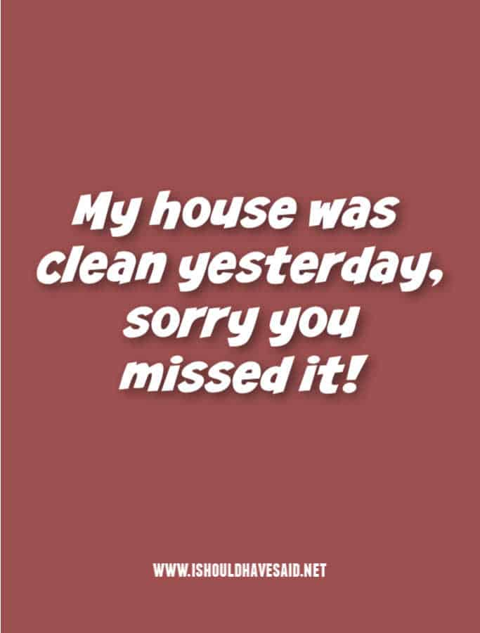 Funny replies when people give you a hard time about your messy house
