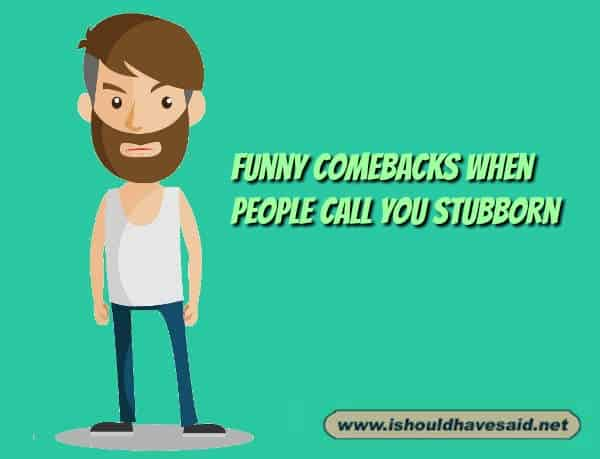 Use our funny comebacks when people call you stubborn. Check out our top ten comeback lists at www.ishouldhavenet.net.