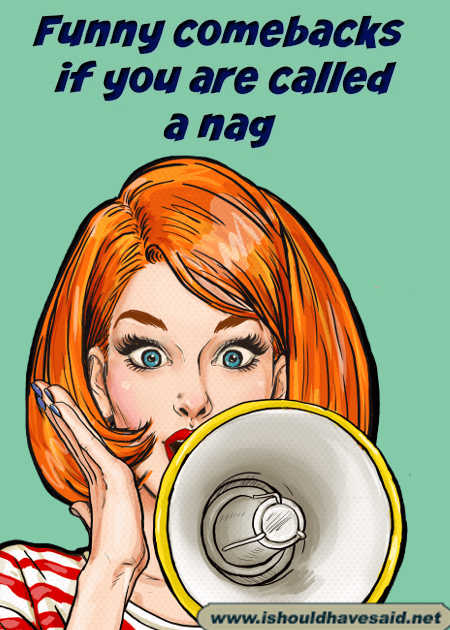 Comebacks when people call you a nag. Check out our top ten comeback lists at www.ishouldhavesaid.net.