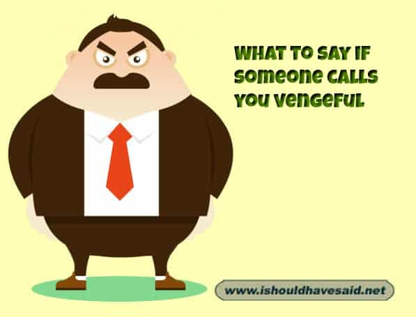 hat to say when someone calls you vengeful. Check out our top ten comeback lists. www.ishouldhavesaid.net.