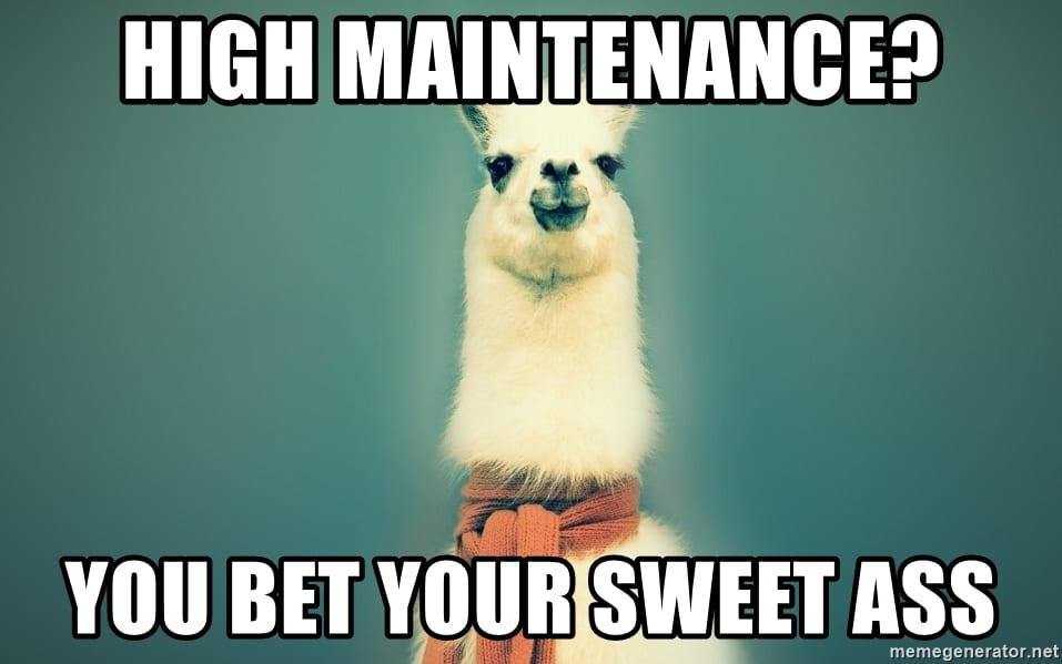 Funny things to say if you are called high maintenance