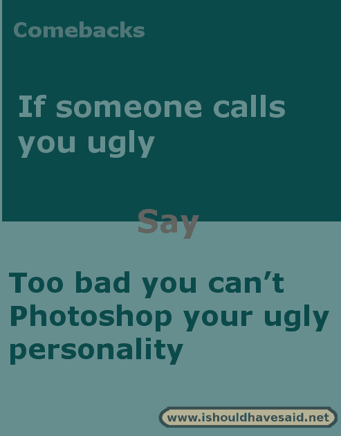 What to say when you are called you ugly. Check out our top ten comeback lists at www.ishouldhavesaid.net .