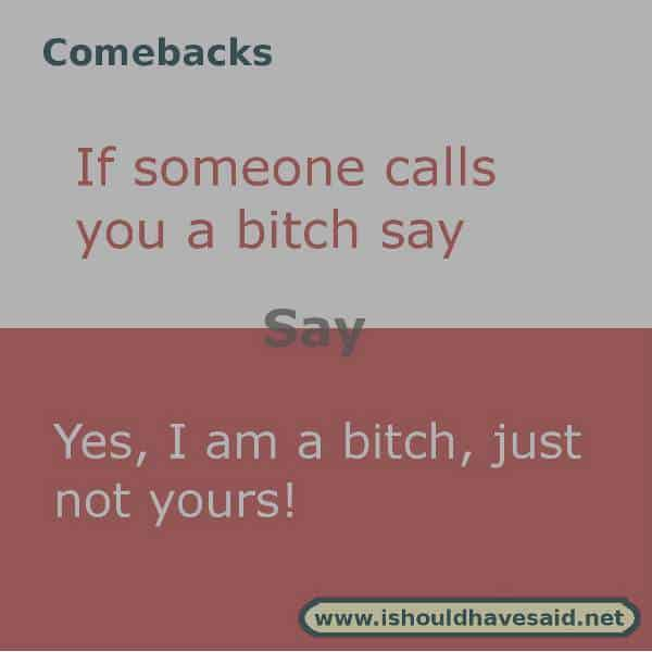 comebacks if someone calls you a bitch1