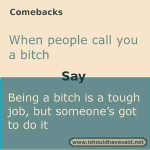 Here's a great comeback if someone calls you a bitch. Check out our top ten comebacks lists.  www.ishouldhavesaid.net