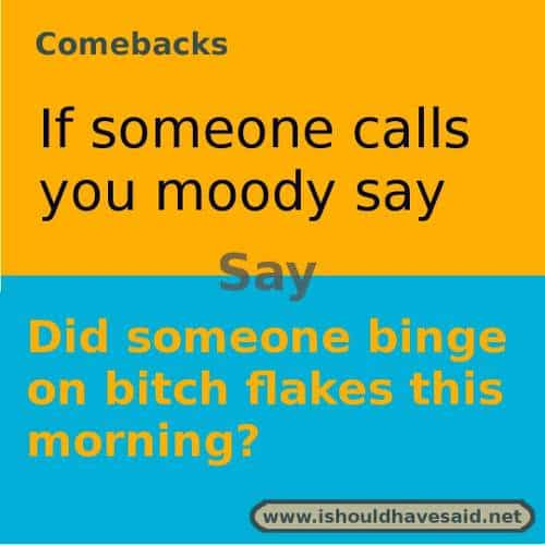 Use these snappy comebacks when someone calls you moody. Check out our top ten comeback lists. https://ishouldhavesaid.net