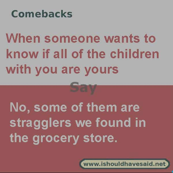 ALT Text What to say if someone asks if all of the children with you belong to you, use one of our clever comebacks. Check out our parenting comebacks www.ishouldhavesaid.net.