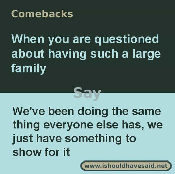 What to say if someone asks if all of the children with you belong to you, use one of our clever comebacks. Check out our parenting comebacks www.ishouldhavesaid.net.